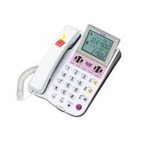 2라인발신자전화기 (RT-2000) (개)