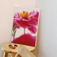 td695-캔버스액자33.4x24.2_재물운높여주는모란꽃