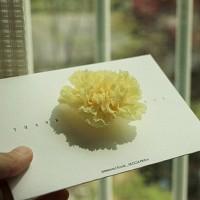 [프리저브드플라워 꽃이핀다] 감사해요 - yellow 카네이션 봉투
