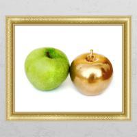 cd349-풋사과금사과(두개)_창문그림액자