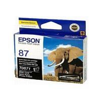 엡손(EPSON) 잉크 C13T087190 / NO.87 / PB / Stylus Photo R1900