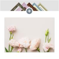 인테리어 캔버스 꽃액자 선인장액자 연분홍 장미