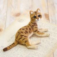 하마나카 뱅갈 고양이 키트