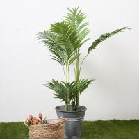 종려나무 93cm