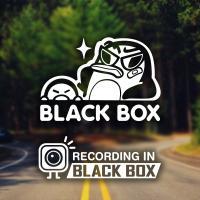 블랙박스 펭키 / 초보운전 반사스티커 자동차스티커