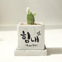 [마음을 담아]캘리그라피화분