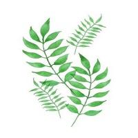 [DIY명화]Q3225 Leaf(잎) size 40*50cm