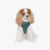 Reversible Light Padded Vest (Green) 리버서블 라이트 패딩