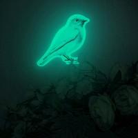 행운을부르는 BLUEBIRD GARDEN (야광파랑새데코스티커)
