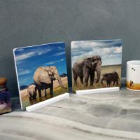 pf095-스탠드액자2P-푸른하늘밑풍수코끼리