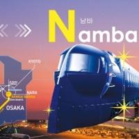 난카이 라피트 특급 열차 왕복권