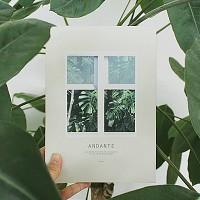 안단테 다이어리_Andante diary