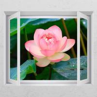 ij980-행복을주는연꽃2_창문그림액자