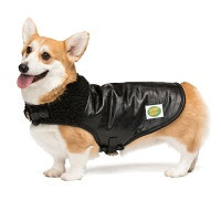 B-3 MOUTON JACKET 4 BIGDOGS black