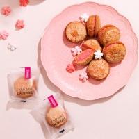 시루아네 딸기 다쿠아즈+쇼핑백 (28g X 10개)