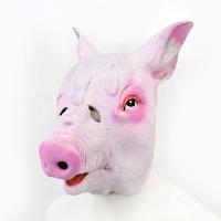 돼지가면-타짱