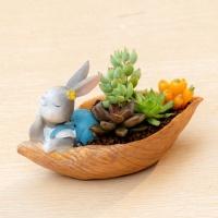 ROOGO 루고화분 토끼의 추수일기 토끼와 나룻배