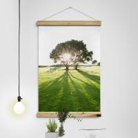 ca347-우드스크롤_60CmX90Cm-햇살비친나무