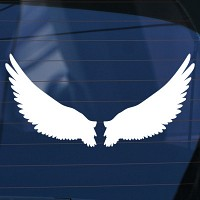 천사날개(2) - 초보운전스티커(393)
