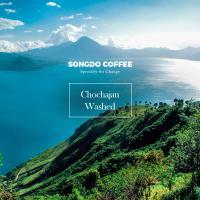 과테말라 초차하우 워시드 (Guatemala Chochajau Wahsed)