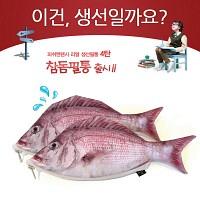 ★무료배송 [피쉬앤팬시] 생선필통 참돔필통