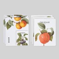 카드세트-10 빈티지 푸르츠 (카드/예쁜카드)