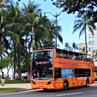 하와이 와이키키 트롤리 1일 패스 블루라인 + 핑크