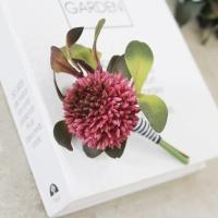 Allium 부토니에