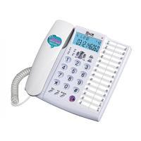 다기능발신자표시전화기 (RT-330) (개)