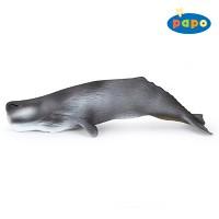 [papo] 향유고래