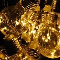 LED 100P 와이어 에디슨전구(10구) - 웜
