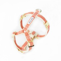 ORANGE COBY GOLD HARNESS