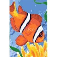 DIY 명화그리기 - DIY   니모 (CX3002) 20x30 그림 (유화/그림그리기/직접그리기/아크릴/취미/색칠)