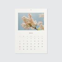 2019 calendar - 선물