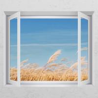 ic999-가을날갈대밭_창문그림액자