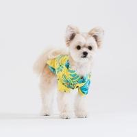 스니프 보태니컬 프린트 셔츠 (옐로우)