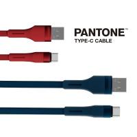팬톤 TYPE-C 데이터 케이블