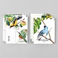 Card set-09 Bird (카드/예쁜카드)