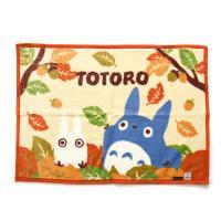 토토로 밍크 담요(낙엽 70X100)