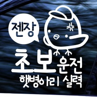 초보운전 햇병아리 - 초보운전스티커(NEW108)