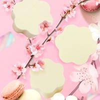 쇼킹밀착꽃잎퍼프