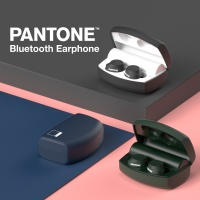 PANTONE PTB-02 블루투스이어폰