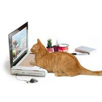 [원더스토어] 썩유케이 노트북 고양이 스크래쳐