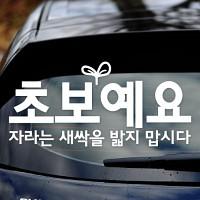 초보예요 자라는 새싹을 - 초보운전스티커(NEW029)