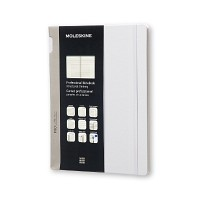 몰스킨 프로페셔널 노트/애스터그레이 하드 XL 몰스킨 (몰스킨)