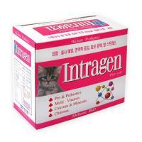 [인트라젠] 분말(2gx30포)