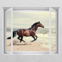 cd685-빠른성공에좋은말_창문그림액자