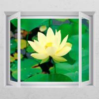ij979-행복을주는연꽃1_창문그림액자