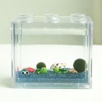 심플 바다 국산 마리모 키우기 DIY 세트(마리모:소)