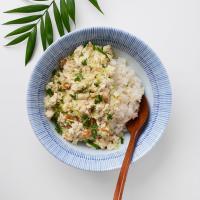 일본식기 코사메 라면기